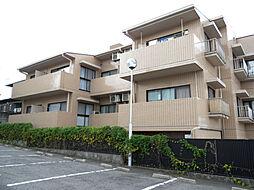 愛知県名古屋市名東区文教台1丁目の賃貸マンションの外観