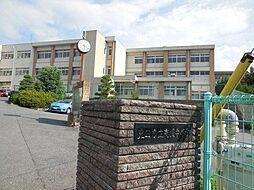 高橋中学校 3100m