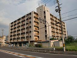 桃山和泉ハイツ[3階]の外観