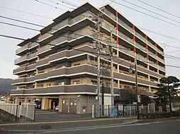 アンピールマンション太宰府[4階]の外観