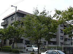 ハイツライラック[1階]の外観