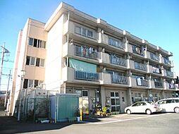 松沢マンション[201号室]の外観