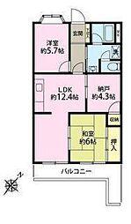 神奈川県藤沢市善行2丁目の賃貸マンションの間取り