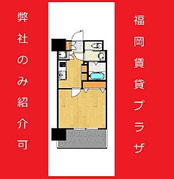 サヴォイ箱崎邸園 9階1Kの間取り