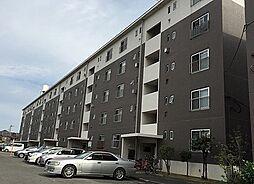 助松ハイツ D棟[4階]の外観
