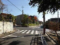 前面道路(南西側)