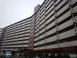 向島ニュータウン3街区G棟[11F号室]の外観