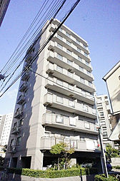 lupine Seiwa 〜ルピナス静和〜[203号室]の外観