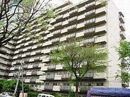 シーアイマンション円山西棟[1114号室号室]の外観