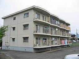 コーポ茨木[103号室]の外観
