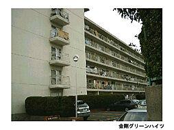 金剛グリーンハイツ[6階]の外観