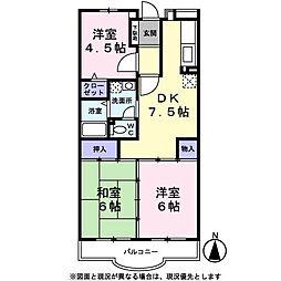 埼玉県八潮市八潮6丁目の賃貸マンションの間取り