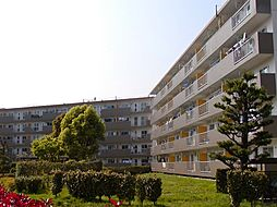 UR取手井野[4-15-503号室]の外観