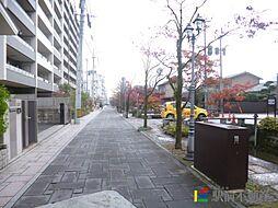 カンフォーラ松原[6階]の外観