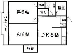 静岡県浜松市中区城北1丁目の賃貸マンションの間取り