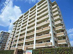 ニューシティアパートメンツ南小倉II[7階]の外観