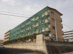 さくらハイツ III[1階]の外観