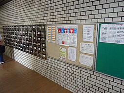 広島県広島市西区打越町の賃貸マンションの外観