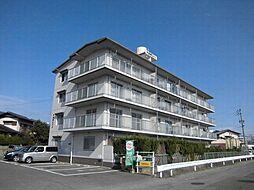 中島第2ビル[205号室]の外観