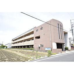 グレースコート神戸[305号室]の外観