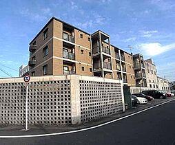 京都府京都市南区上鳥羽岩ノ本町の賃貸マンションの外観