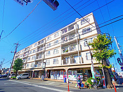 埼玉県新座市片山2丁目の賃貸マンションの外観