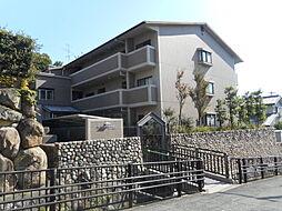 メルベーユ朝日ヶ丘[0203号室]の外観