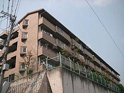 智関第3マンション[4階]の外観