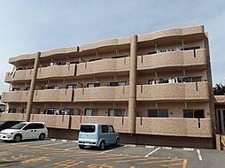 愛知県岡崎市若松町字西三田ケ入の賃貸マンションの外観