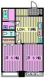 PLUMERIA北戸田[311号室]の間取り