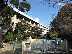 朝霧中学校(980m)