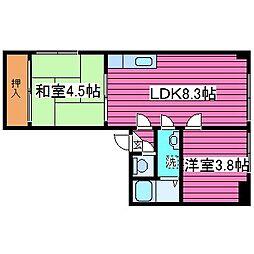 ドエルリッチIII[203号室]の間取り