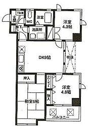 シンセリティハイツ[3階]の間取り