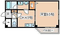 兵庫県神戸市中央区脇浜町2丁目の賃貸マンションの間取り