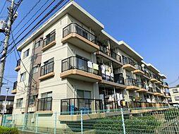 東京都中野区上鷺宮の賃貸マンションの外観