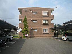 佐賀県唐津市和多田本村の賃貸マンションの外観