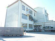 小学校水戸市立酒門小学校まで1316m