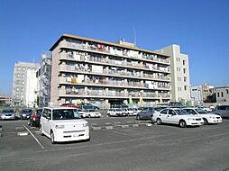 市役所前三和マンション[103号室]の外観