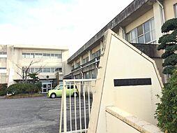 坂田小学校 約420m