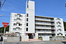 浜田リバーサイドテラス[505号室]の外観