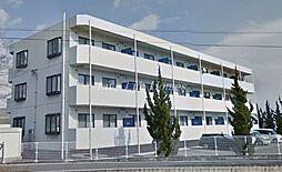 徳島県阿波市吉野町西条字東大竹の賃貸マンションの外観