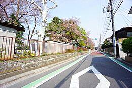 西側接道の前面道路幅員は6.0m超と広いにも関わらず、お車の通りは比較的少ない。