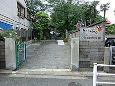 周辺環境:小鳩幼稚園