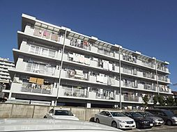 東京都板橋区蓮根3丁目の賃貸マンションの外観