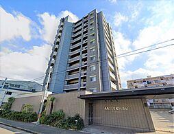 鹿児島本線 黒崎駅 徒歩15分