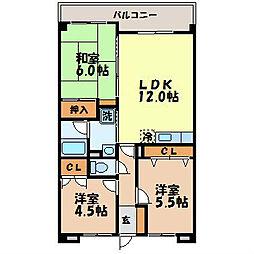 長崎県長崎市青山町の賃貸マンションの間取り