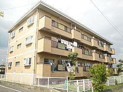 愛媛県松山市北土居4丁目の賃貸マンションの外観
