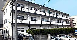 洋明ハイツ[1階]の外観