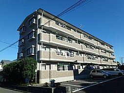 静岡県静岡市駿河区中原の賃貸マンションの外観