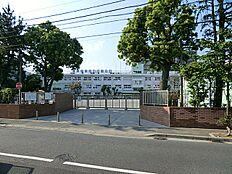 篠崎小学校 910m